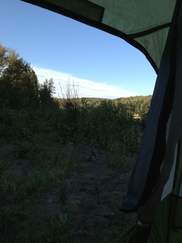 View from the tent on a sunny morning