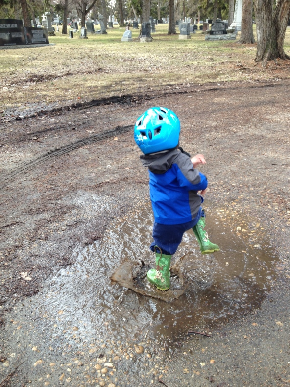 Happy in the puddles!