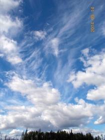 Fantastic skies