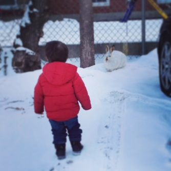 A boy and his bunny: he looked for the rabbit every time he visited.