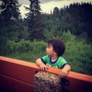 High above McKinnon Ravine