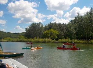 Learn to paddle a canoe, kayak or SUP at Rundle Park on River Day