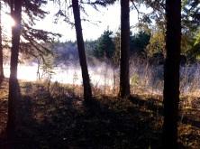 More morning mist on Burtonsville