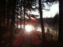 Morning mist on Burtonsville
