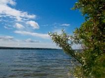 Moose Lake, view from Anshaw
