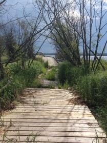 Bridge from Jackson to Kinnaird Lake