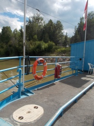 The Vega (or Klondyke) Ferry runs all day long in the summer months.
