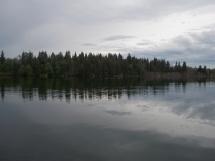 Ross Lake shoreline