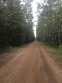 The trail waits
