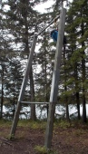 Not a very stable bear pole: I need to practice my throws!
