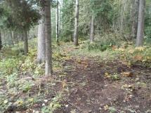 Not a very easy trail's end, Kinnaird-Blackett Lake