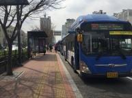 Excellent bus infrastructure!